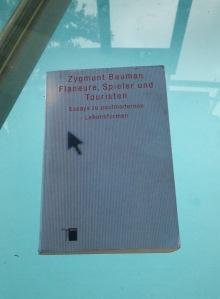 Bauman2